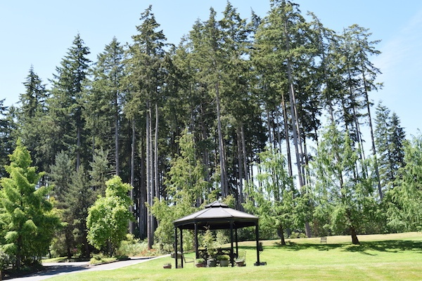 Village Green Retirement Campus, Gazebo with Tall Trees